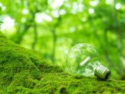 再生可能エネルギーの電力会社・電気料金プランを比較!エコで安いおすすめは?